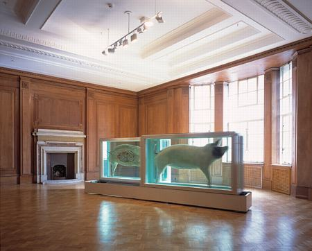 DAMIEN HIRST EXHIBITION