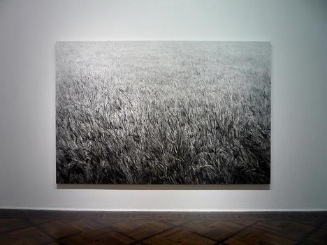 无垠的草坪——石至莹个展