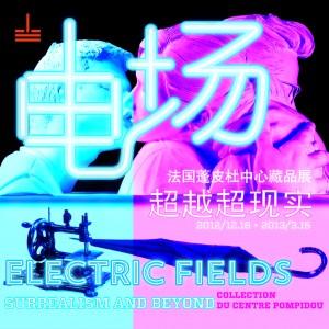 电场: 超越超现实 – 法国蓬皮杜中心藏品展