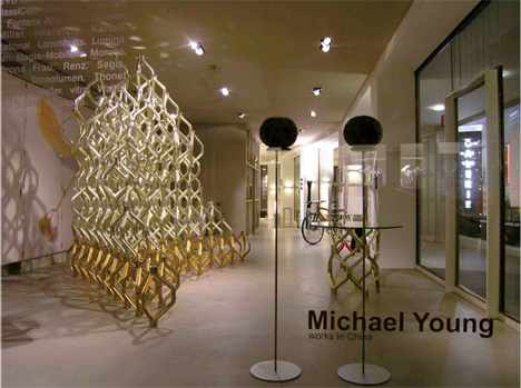 "MICHAEL YOUNG ""WORKS IN CHINA"""