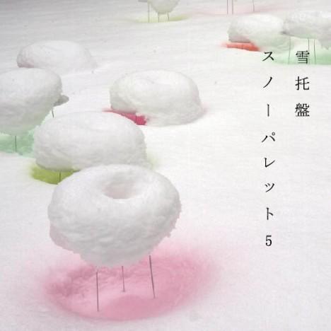 SNOW PALLET 5