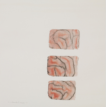 "MICHIKO SOTOBAYASHI ""BODY AND ORGANS"""