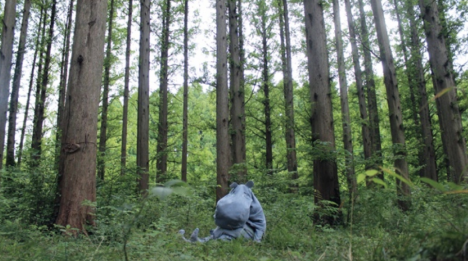 """Moomin Family goes on a picnic to see Kannon"" 2014, slide, text and phonetic sound"