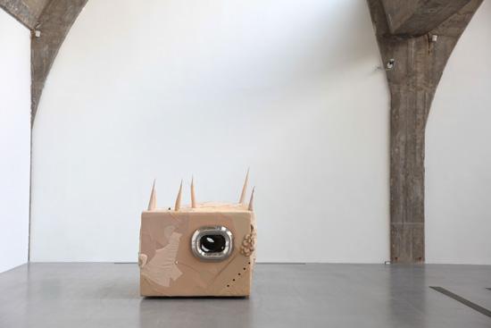 Skin Cube, 2009
