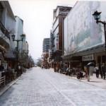 Shizuoka Milano