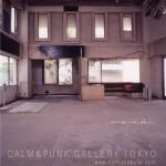 CALM & PUNK GALLERY