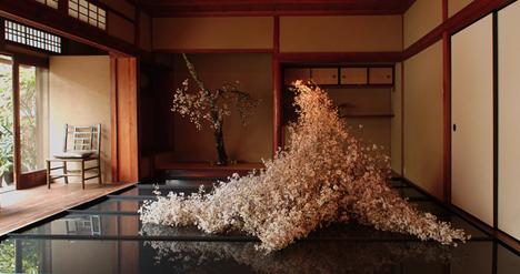 © Atsunobu Katagiri, 2008. Monde Books