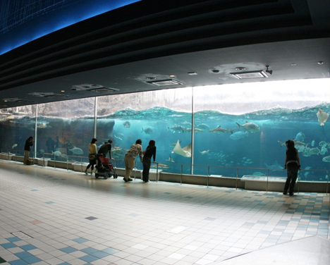 © Suma Aqualife Park in Kobe