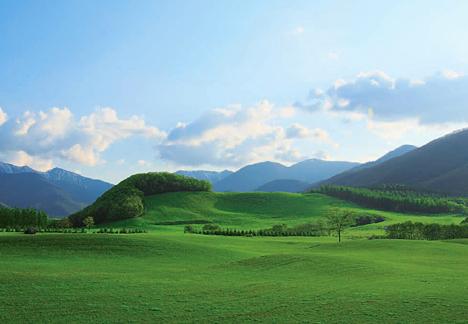 © Tokachi Millennium Forest