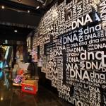 DNA GALLERIA