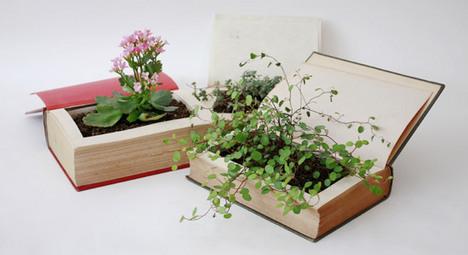 HONBACHI/本鉢