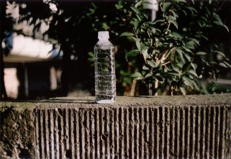 臼井良平展「PET (PORTRAIT OF ENCOUNTERD THINGS)」