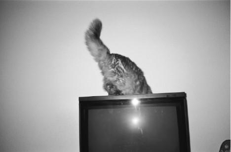 AOKI TAKAMASA写真展「PHOTOGRAPHY」
