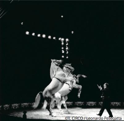 レオナルド・ペレガッタ写真展「IL CIRCO / サーカス」