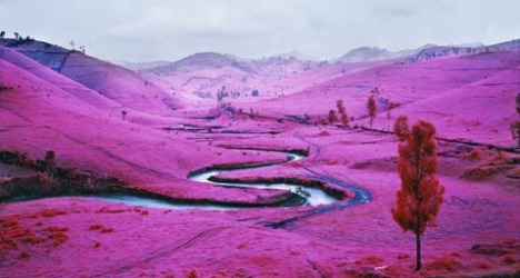 "RICHARD MOSSE ""THE ENCLAVE"""