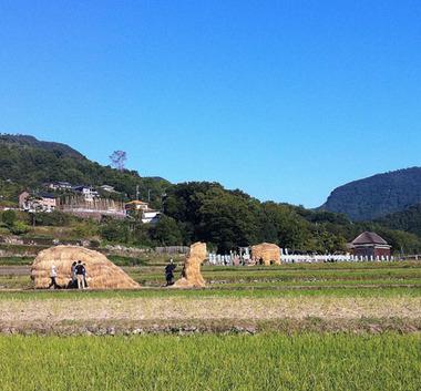 shodoshima-wara01.jpg