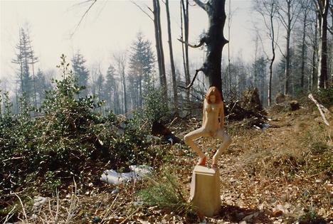 2003-Baden-baden-H90cm-Acacia.jpg