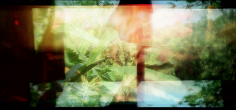 "APICHATPONG WEERASETHAKUL ""THE SERENITY OF MADNESS"""