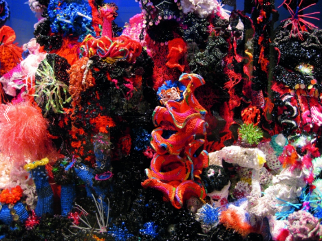 Institute For Figuring's Crochet Coral Reef project, 2005–ongoing, Photo ©  the Institute For Figuring
