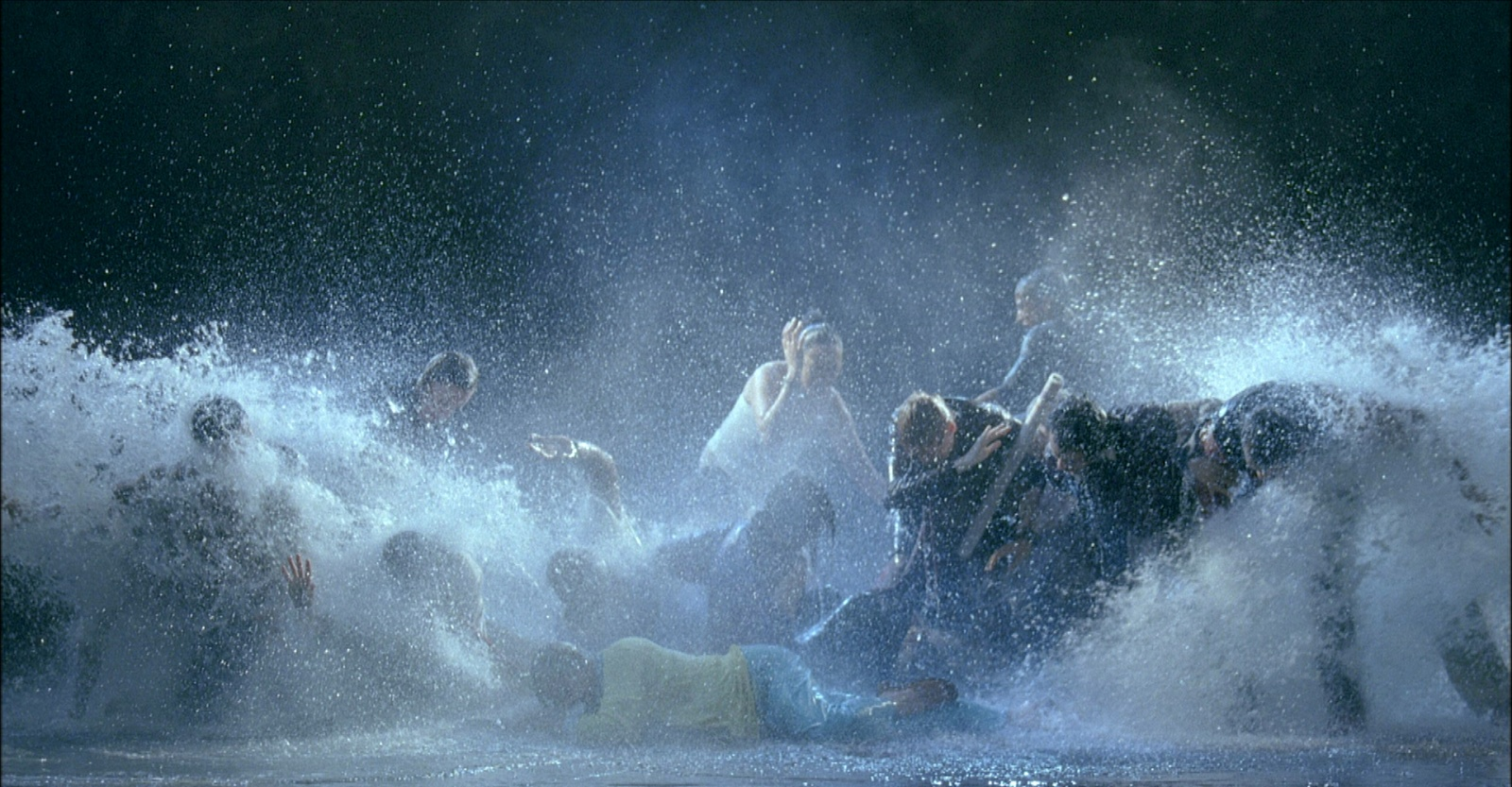 "BILL VIOLA ""THE RAFT"""
